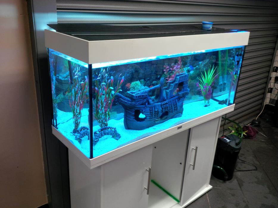 Juwel rio 240 white gloss fish tank full setup with for Used 300 gallon fish tank for sale