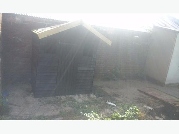 Dark wood garden shed good condition 6x4