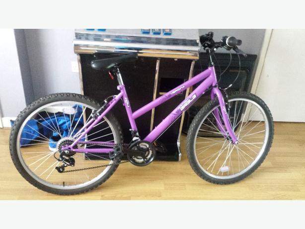girls/ladies bike