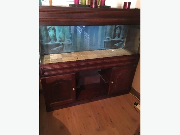 4ft vivarium with stand