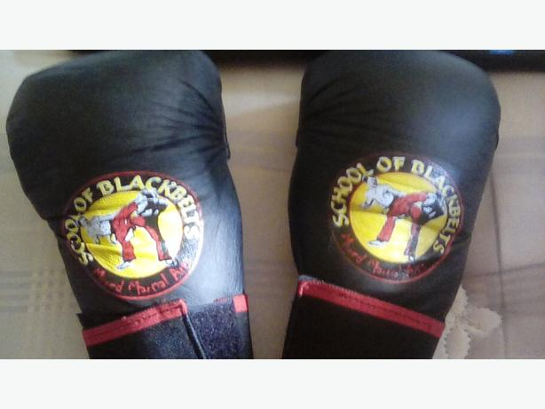 Boys XS mixed martial arts gloves
