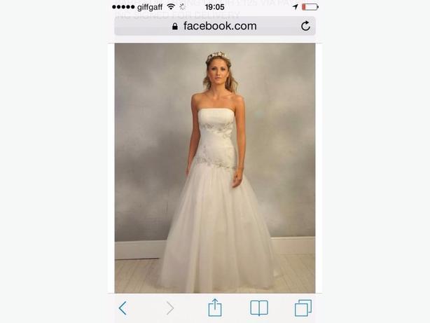 Brand new wedding dress and veil