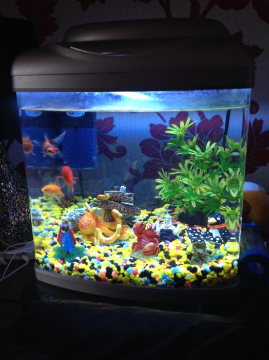 Fish tank for sale tipton sandwell for Amazon fish tanks for sale