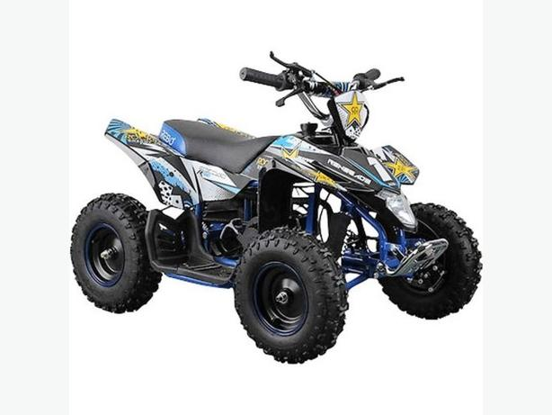 ROCKSTAR SUPER RAPTOR 49cc 2 Stroke Child's Petrol Engine Mi