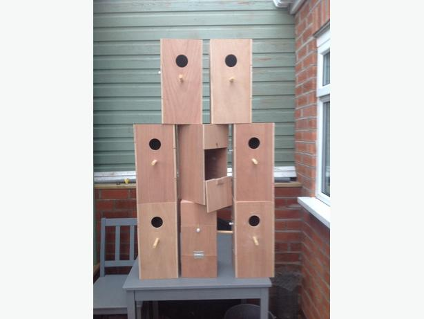 Parakeet and finch nest boxes