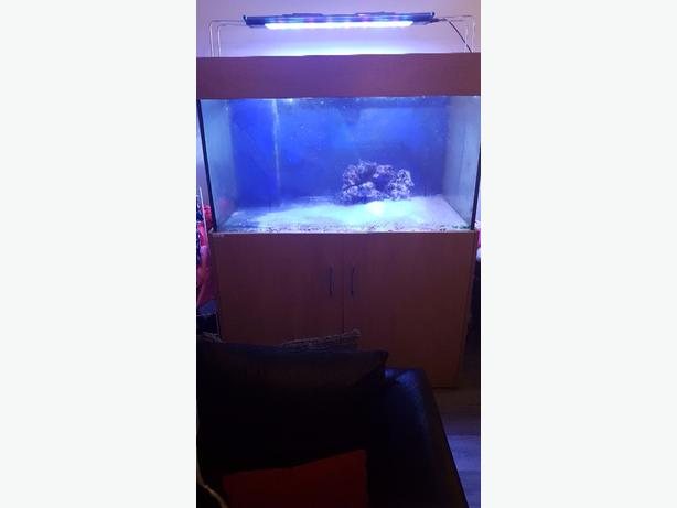 Marine fish tank sump and stand