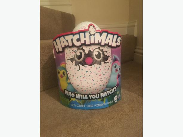 teal hatchimal