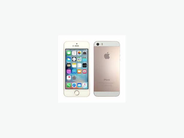 iphone 5s  gold open all networks