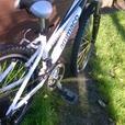girls ammaco ethos alloy mountain bike