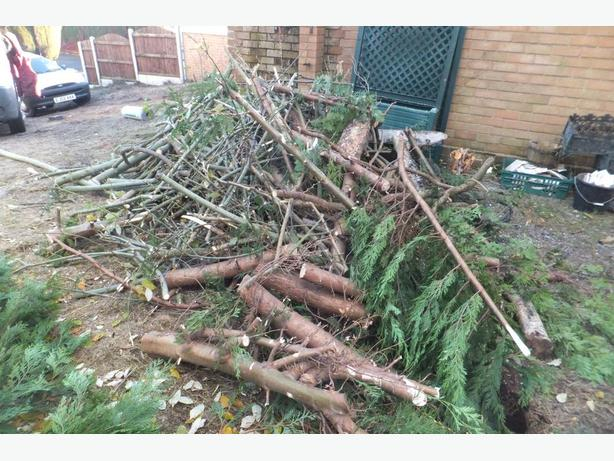 FREE: FIREWOOD, COLLECT DUDLEY