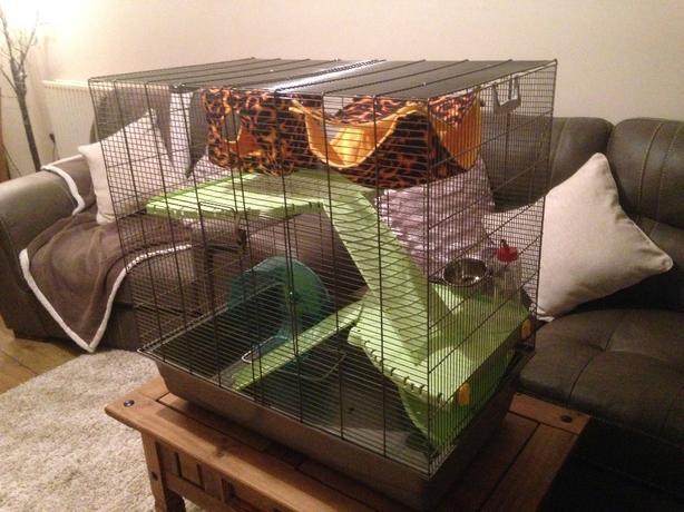 Savic Freddy 2 Max Rat Ferret Cage Hammocks Wheel
