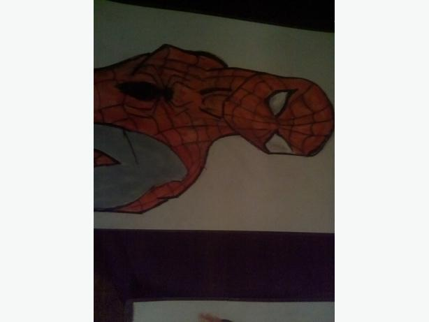 Spider man pic s