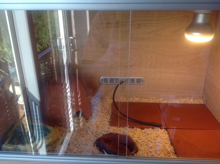 2ft Vivexotic Vivarium Complete Reptile Set Up Viv Snake