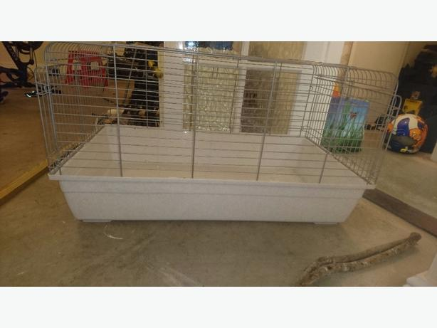 Guinea pig rabbit cage for sale brierley hill dudley for Guinea pig and cage for sale