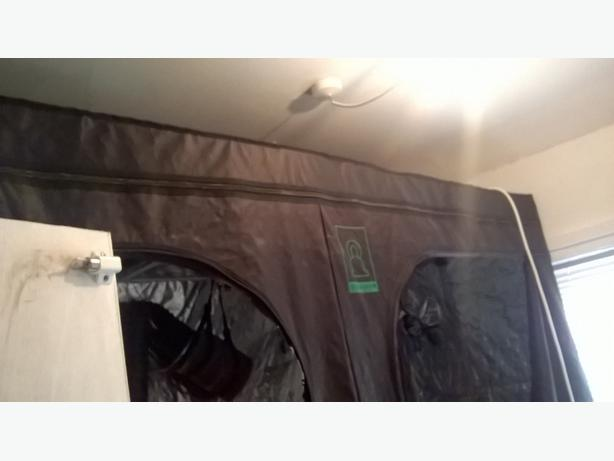 grow tent, wilma set up