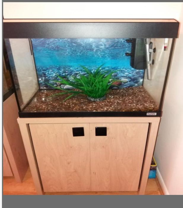 90 litre fluval roma 200 wolverhampton dudley. Black Bedroom Furniture Sets. Home Design Ideas