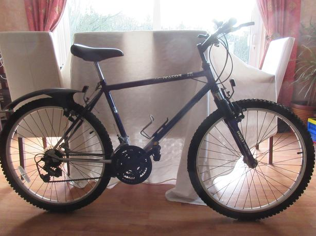 Raleigh Activator mountain bike c1993 (all offers considered)