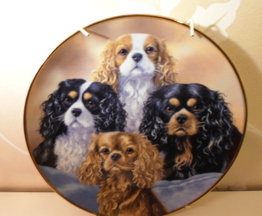 Cavalier King Charles Spaniel Wall Plate By Danbury Mint