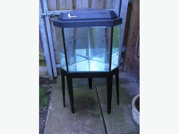 Clear seal corner fish tank 75 litre with metal stand for Metal fish tank stand