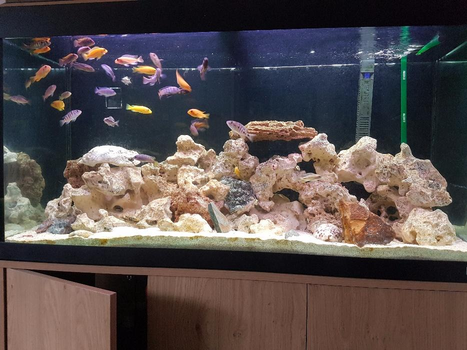 Fluval Fish Tank And Stand With Fish Rocks And External