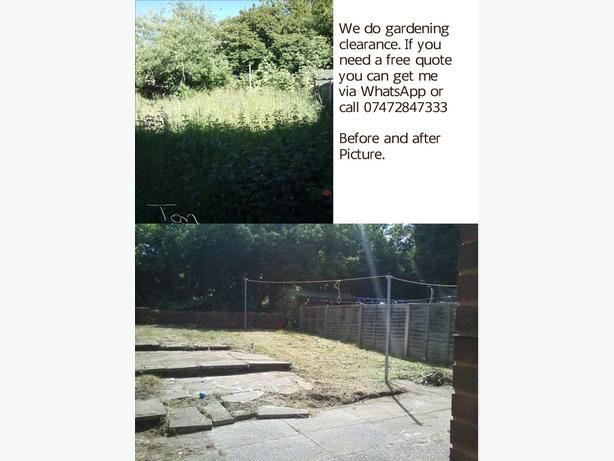 is your garden completley overgrown.