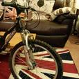 Boys mountain bike 20 Inch