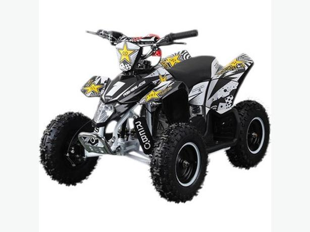superLT100E RENEGADE ROCKSTAR 36v Electric Battery 1000w Mini Quad Bike ATV