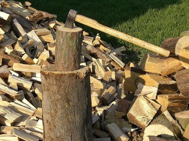 WANTED: logs and loose pallet type wood
