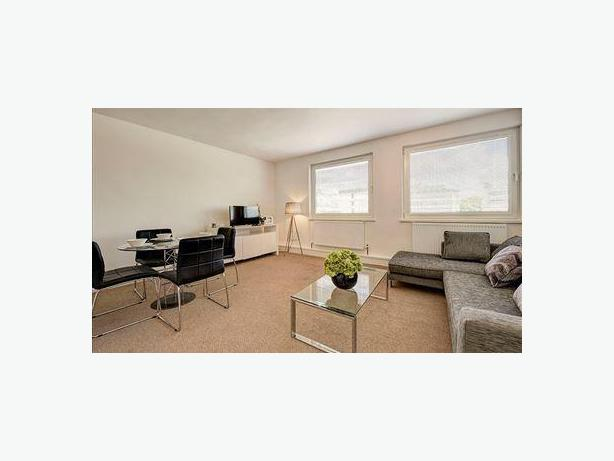 A Superb One Bedroom Flat for Rent