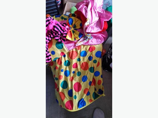 woman's one size clown outfit
