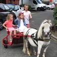 childrens pony parties