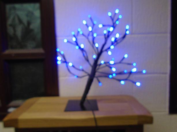 small tree light