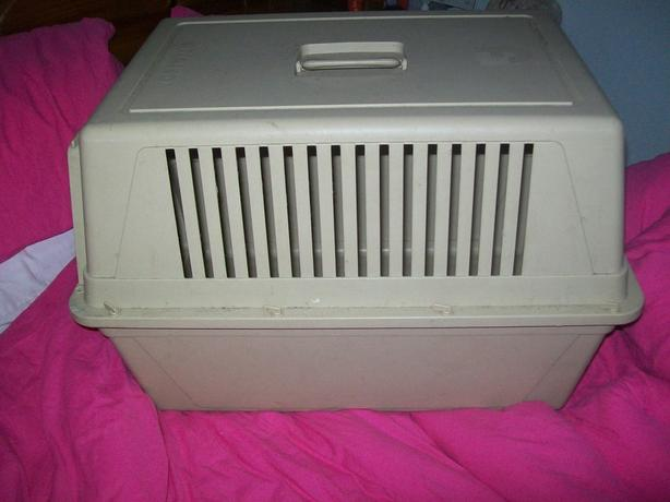 atlas 40 dog crate/cage, plastic
