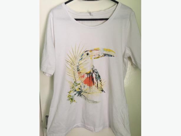 fews clothings