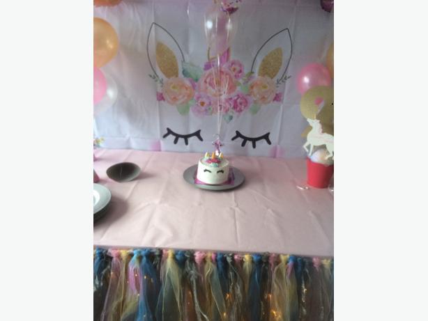 unicorn vinyl backdrop & tutu table skirt