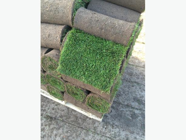 turf, top soil