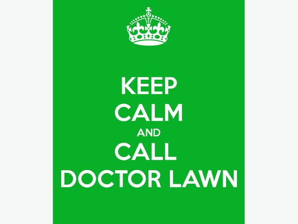 Lawn Treatments and Cutting Service for a Perfect Weed Free Lawn