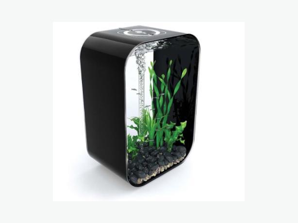 biorb 60 litre black gloss fish tank