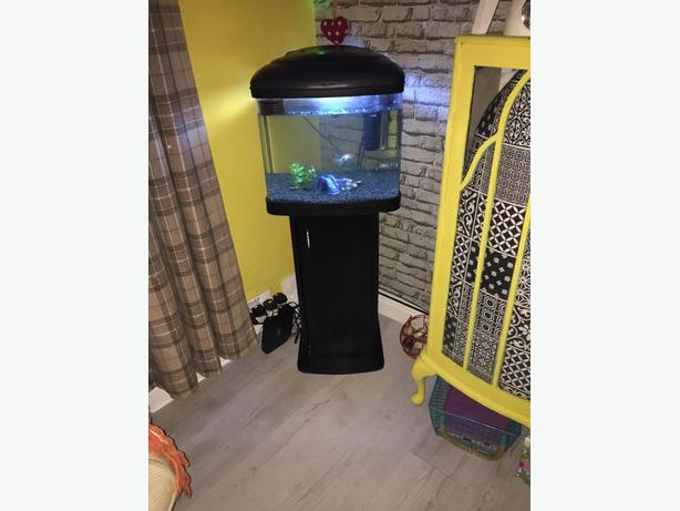 fishpod fish tank 48l £60 ono