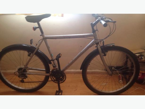 professional silver mountain bike