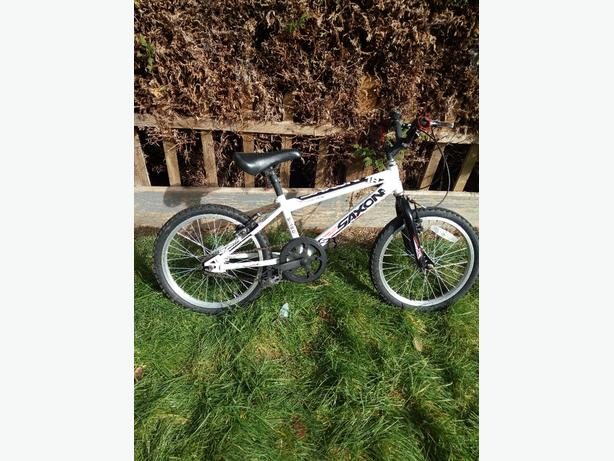 boys saxon mountain bike