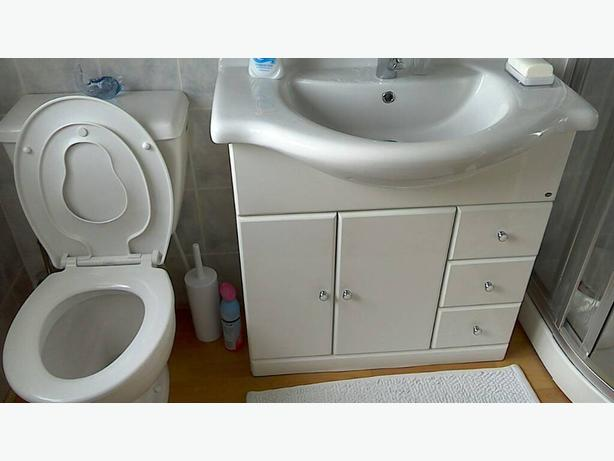 Toilet and bathroom sink in cabinet
