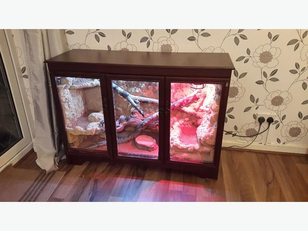 One Off 4ft Vivarium