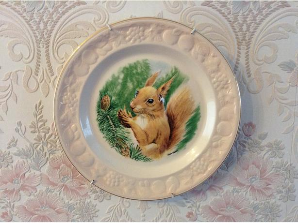 Royal Worcester plates