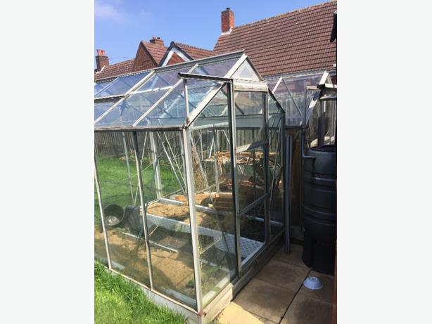 FREE: greenhouses