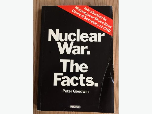 Nuclear War the Facts by Peter Goodwin