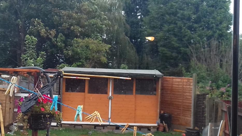 £300 · 12x5 pigeon loft from Blakes sheds
