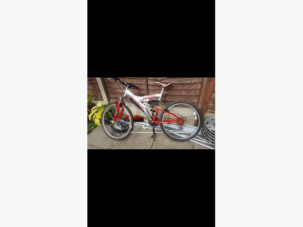 Reebok mountain bike
