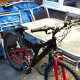 VORTEX MUDDY FOX MOUNTAIN BIKE