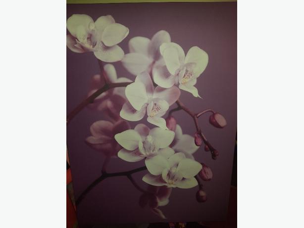 Large orchid canvas plum
